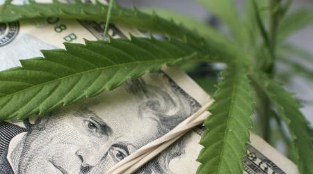 The Top 3 Small-Cap Marijuana Stocks for 2019